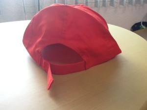 gorra roja campanas politicas 2013