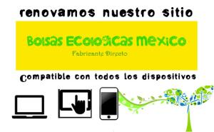 banner_bolsaseoclogicas