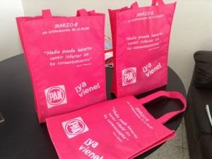 bolsas ecologicas fiusha partido accion nacional
