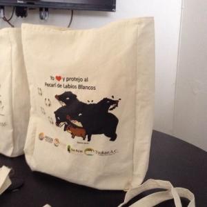 bolsas de manta no bolsas ecologicas gobierno de quintana roo